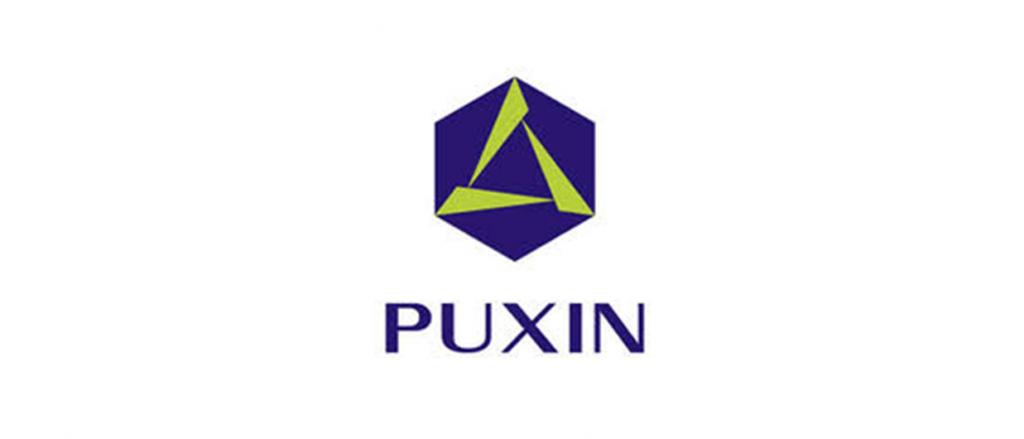 puxin
